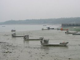 barges à huitres